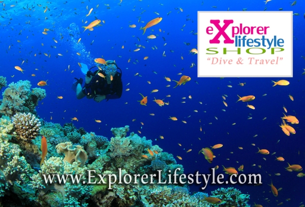 Online Diving Shop in Malaysia